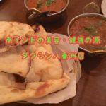 【南インド料理】東京「ダクシン八重洲店」身体の内側から綺麗に