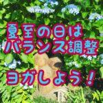 【ヨガアーサナ】デトックス・バランス、夏至エネルギーチェンジ