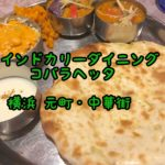 【インド料理】元町中華街 インドカリーダイニング コバラヘッタ