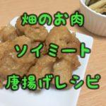 【レシピ】ヴィーガン大豆ミート・ソイミート・畑のお肉唐揚げ